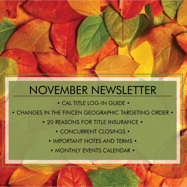 newsletternov