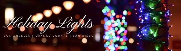 Holiday Lights 2018-Blog